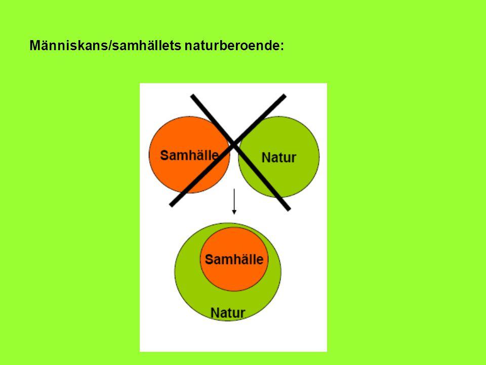 Människans/samhällets naturberoende:
