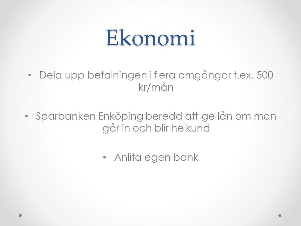 Ekonomi Dela upp betalningen i flera omgångar t.ex. 500 kr/mån Sparbanken Enköping beredd att ge lån om man går in och blir helkund Anlita egen bank