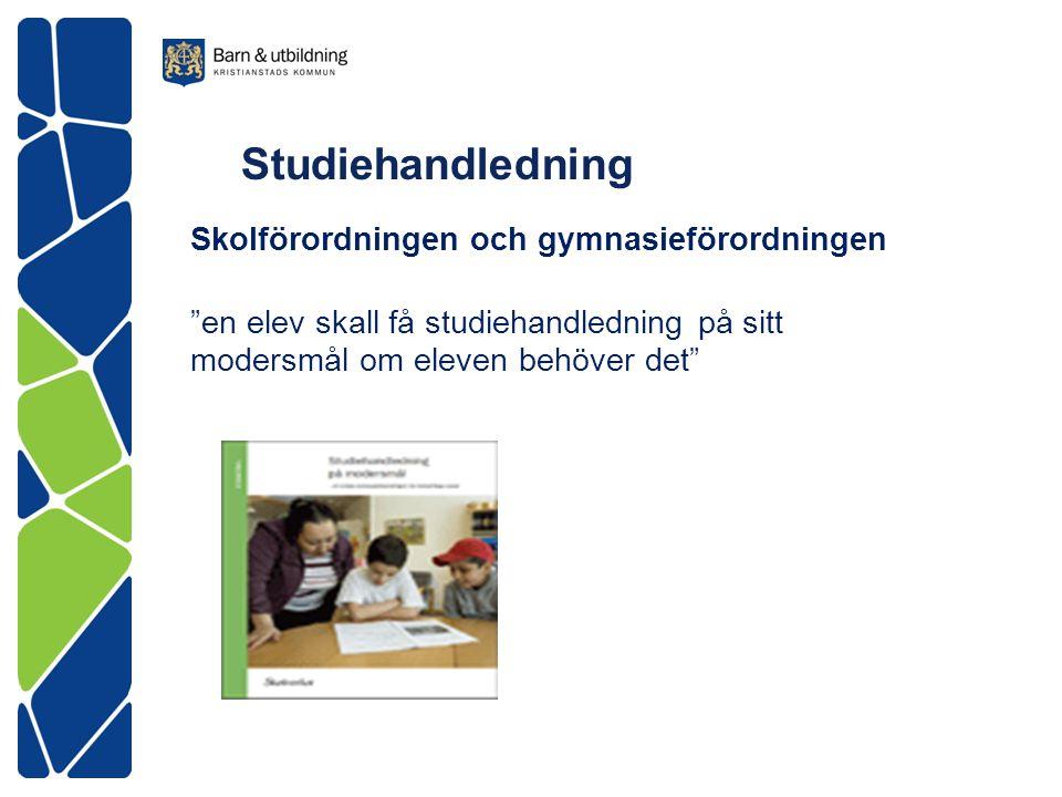 """Studiehandledning Skolförordningen och gymnasieförordningen """"en elev skall få studiehandledning på sitt modersmål om eleven behöver det"""""""