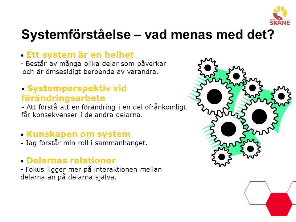 Systemförståelse – vad menas med det? Ett system är en helhet - Består av många olika delar som påverkar och är ömsesidigt beroende av varandra. Syste