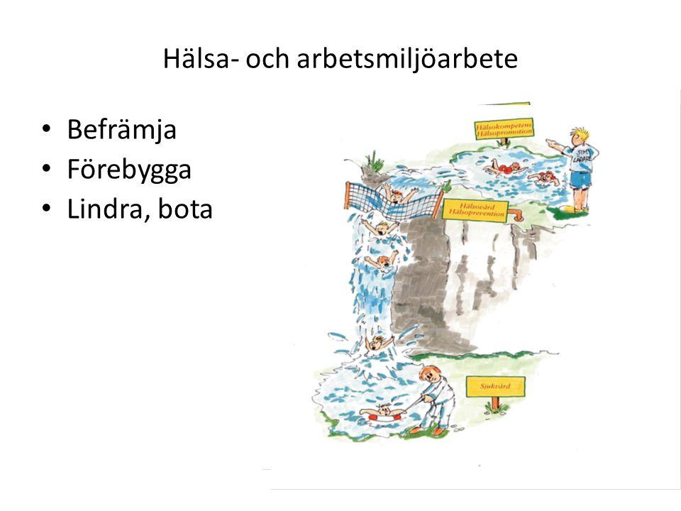 Nämnd/styrelses ansvar Ytterst juridiska arbetsmiljöansvaret inom resp.