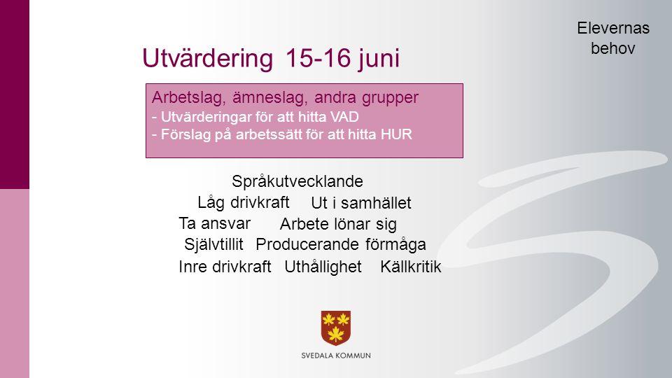 Utvärdering 15-16 juni Arbetslag, ämneslag, andra grupper - Utvärderingar för att hitta VAD - Förslag på arbetssätt för att hitta HUR Inre drivkraft T