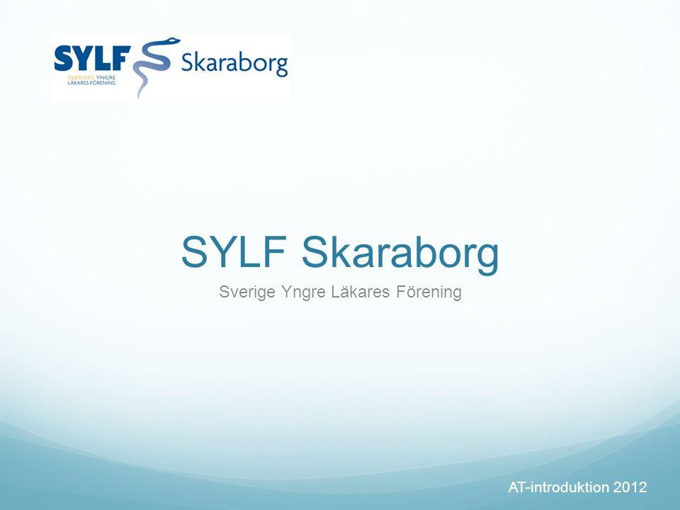 SYLF Skaraborg Sverige Yngre Läkares Förening AT-introduktion 2012