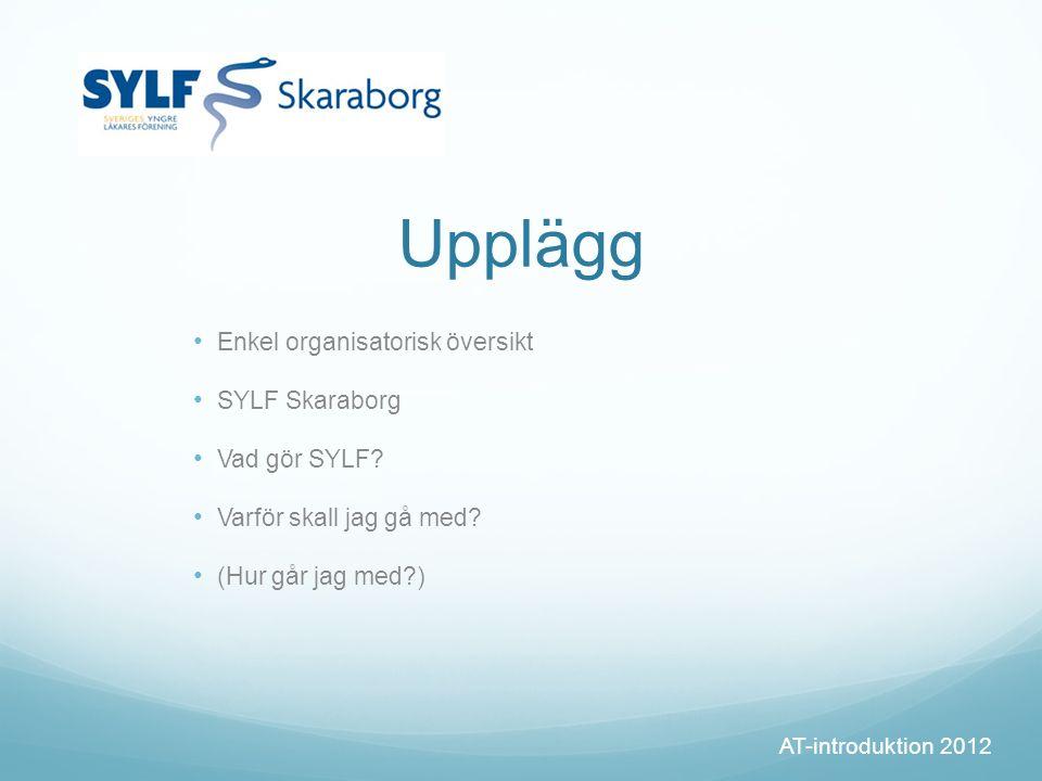 Upplägg Enkel organisatorisk översikt SYLF Skaraborg Vad gör SYLF.