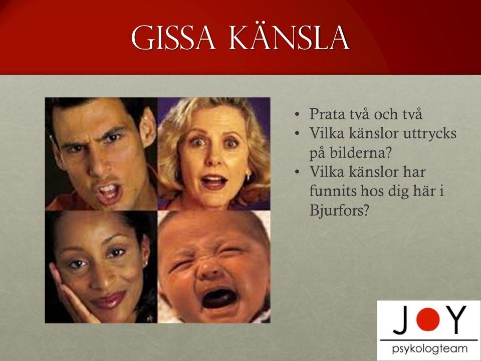 Gissa Känsla Prata två och två Vilka känslor uttrycks på bilderna.