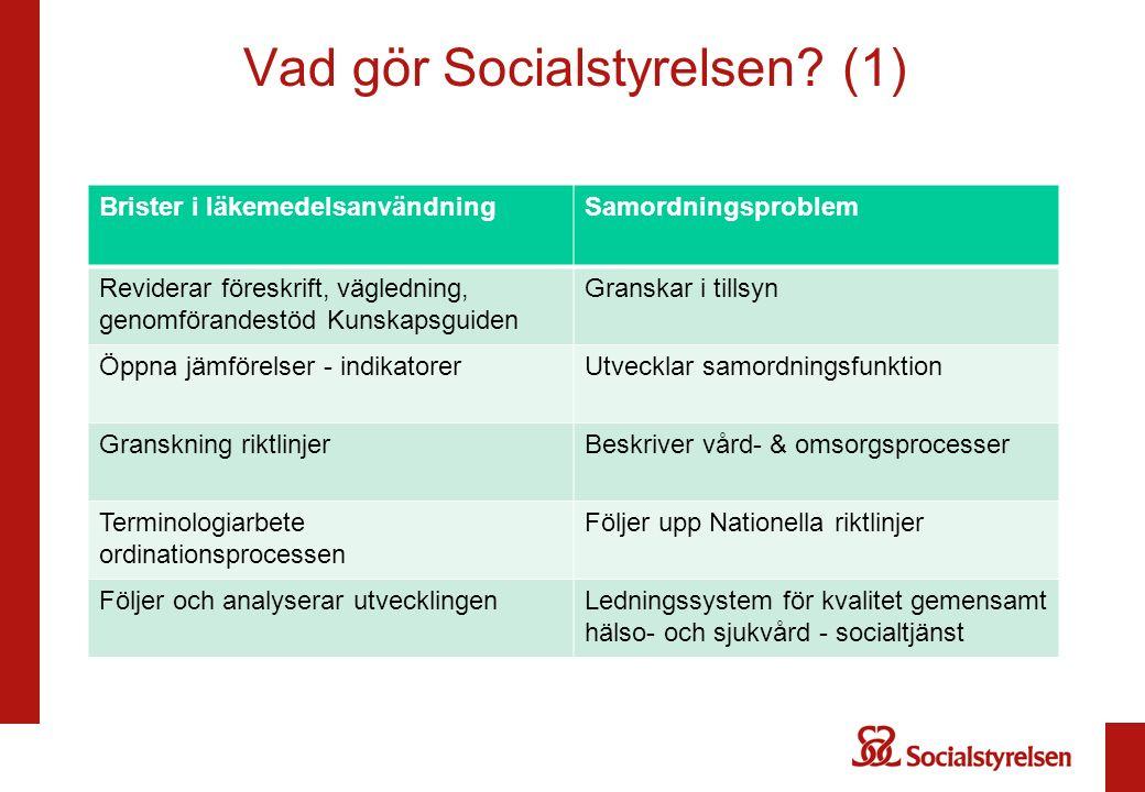 Vad gör Socialstyrelsen.
