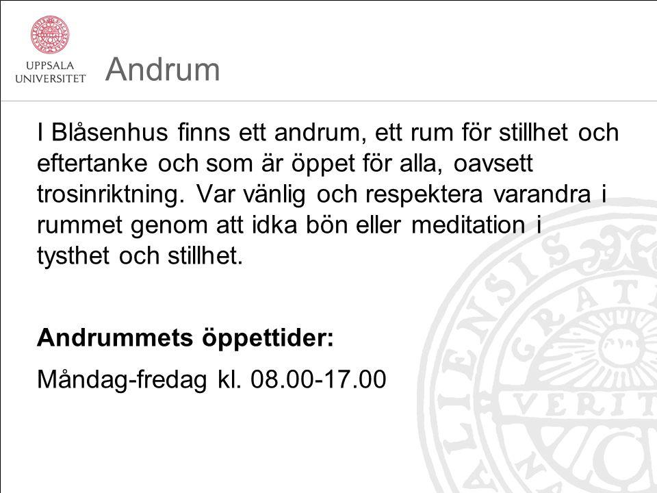 Andrum I Blåsenhus finns ett andrum, ett rum för stillhet och eftertanke och som är öppet för alla, oavsett trosinriktning.