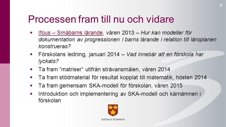 Processen fram till nu och vidare 3  Ifous – Småbarns lärande, våren 2013 – Hur kan modeller för dokumentation av progressionen i barns lärande i rel