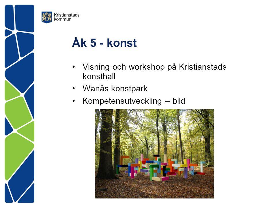 Åk 5 - konst Visning och workshop på Kristianstads konsthall Wanås konstpark Kompetensutveckling – bild