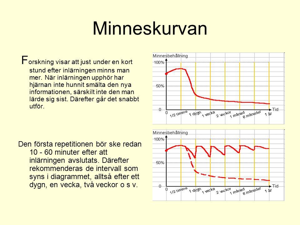 Minneskurvan F orskning visar att just under en kort stund efter inlärningen minns man mer. När inlärningen upphör har hjärnan inte hunnit smälta den