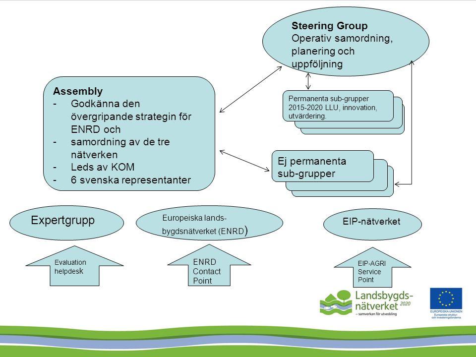 Styrgrupp Kansli kontakt- punkt LAG- grupperna Europeiska nätverket EIP-Agri Nationella landsbygds- vattenbruks- och fiske- aktörer samt LAG Samordningsgrupp Arbetsgrupper Landsbygds- utvecklare Nätverk för lärande och utveckling