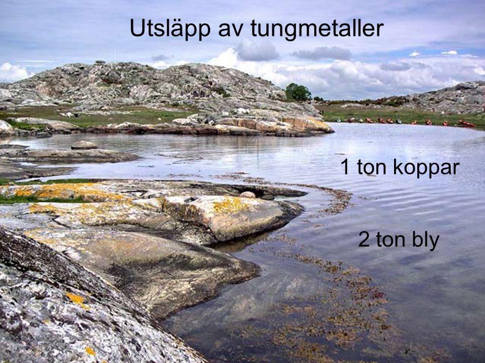 Utsläpp av tungmetaller 2 ton bly 1 ton koppar