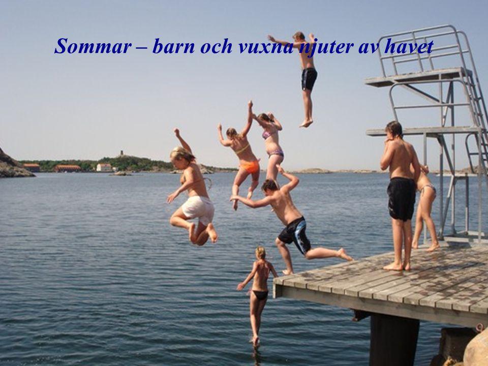 Sommar – barn och vuxna njuter av havet