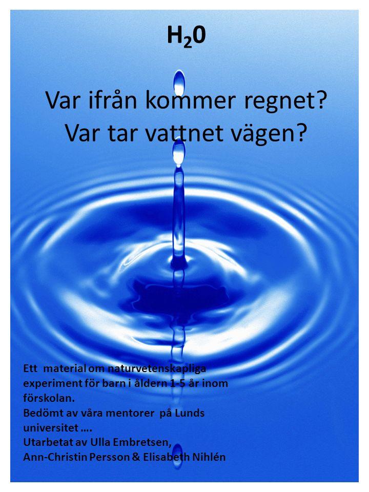 Innhållsförteckning 1 1.Beskrivning av Vattentemat2 2.