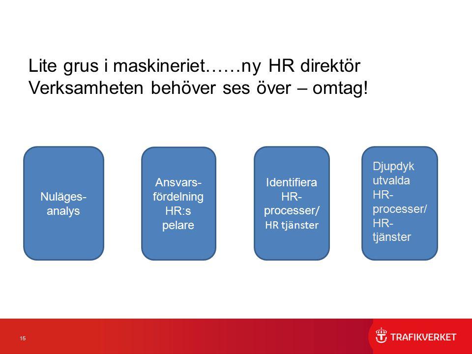 15 Lite grus i maskineriet……ny HR direktör Verksamheten behöver ses över – omtag! Nuläges- analys Ansvars- fördelning HR:s pelare Identifiera HR- proc