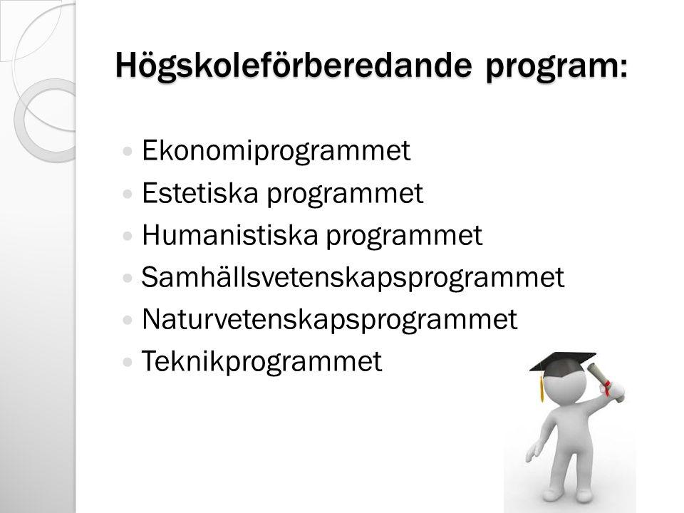 Högskoleförberedande program: Ekonomiprogrammet Estetiska programmet Humanistiska programmet Samhällsvetenskapsprogrammet Naturvetenskapsprogrammet Te