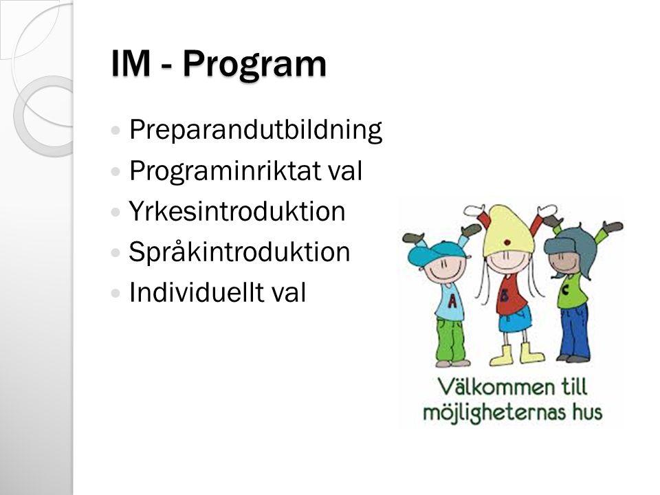 IM - Program Preparandutbildning Programinriktat val Yrkesintroduktion Språkintroduktion Individuellt val