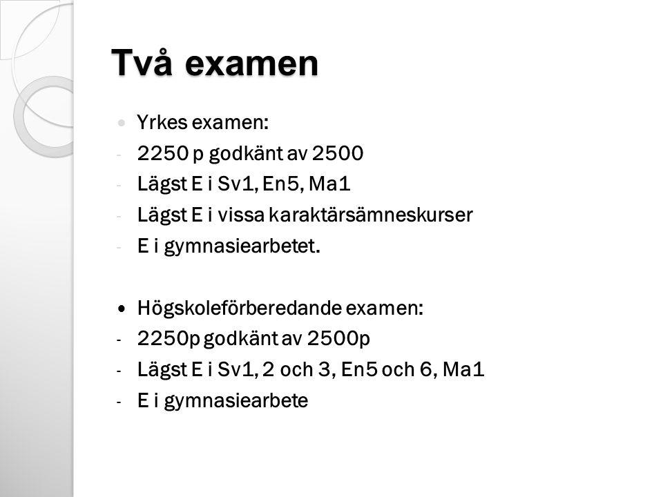 Två examen Yrkes examen: - 2250 p godkänt av 2500 - Lägst E i Sv1, En5, Ma1 - Lägst E i vissa karaktärsämneskurser - E i gymnasiearbetet.