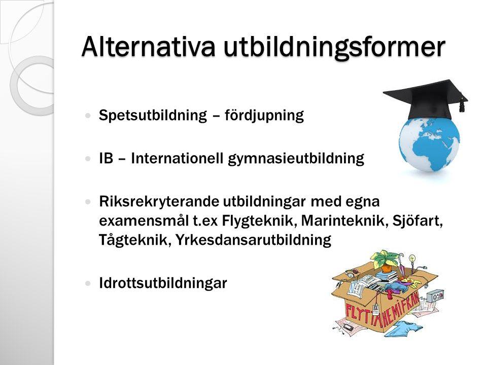 Alternativa utbildningsformer Spetsutbildning – fördjupning IB – Internationell gymnasieutbildning Riksrekryterande utbildningar med egna examensmål t