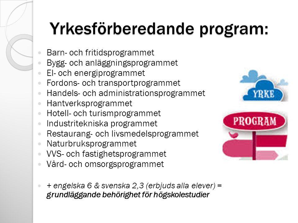 Yrkesförberedande program: Barn- och fritidsprogrammet Bygg- och anläggningsprogrammet El- och energiprogrammet Fordons- och transportprogrammet Handels- och administrationsprogrammet Hantverksprogrammet Hotell- och turismprogrammet Industritekniska programmet Restaurang- och livsmedelsprogrammet Naturbruksprogrammet VVS- och fastighetsprogrammet Vård- och omsorgsprogrammet + engelska 6 & svenska 2,3 (erbjuds alla elever) = grundläggande behörighet för högskolestudier