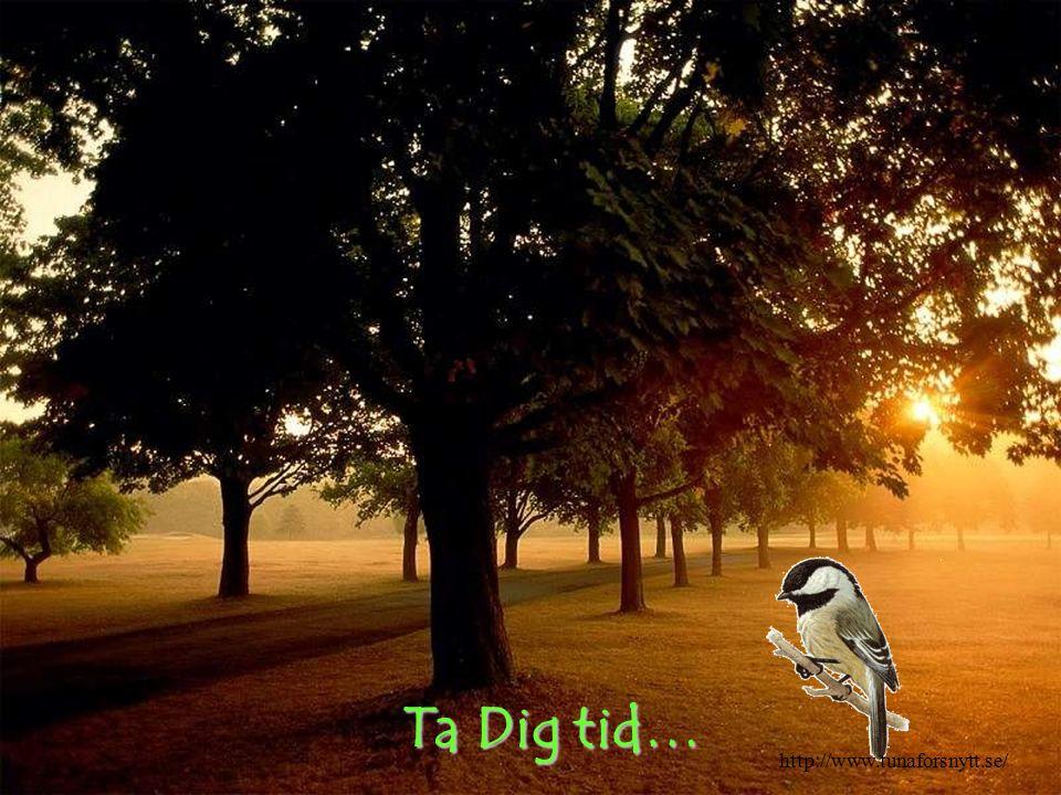 Ta Dig tid… http://www.tunaforsnytt.se/