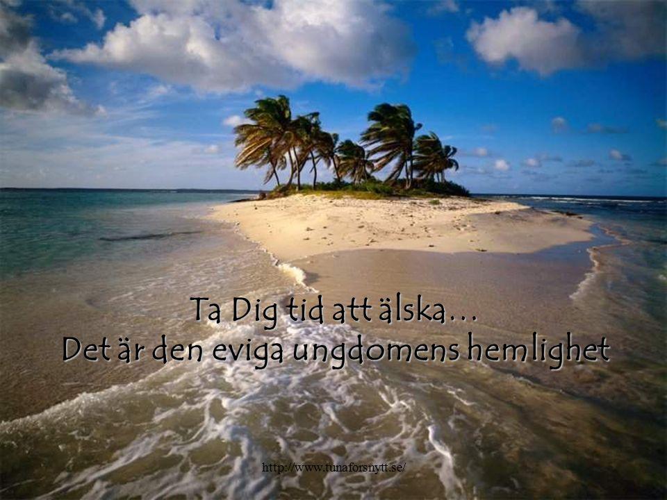 Ta Dig tid att älska… Det är den eviga ungdomens hemlighet http://www.tunaforsnytt.se/
