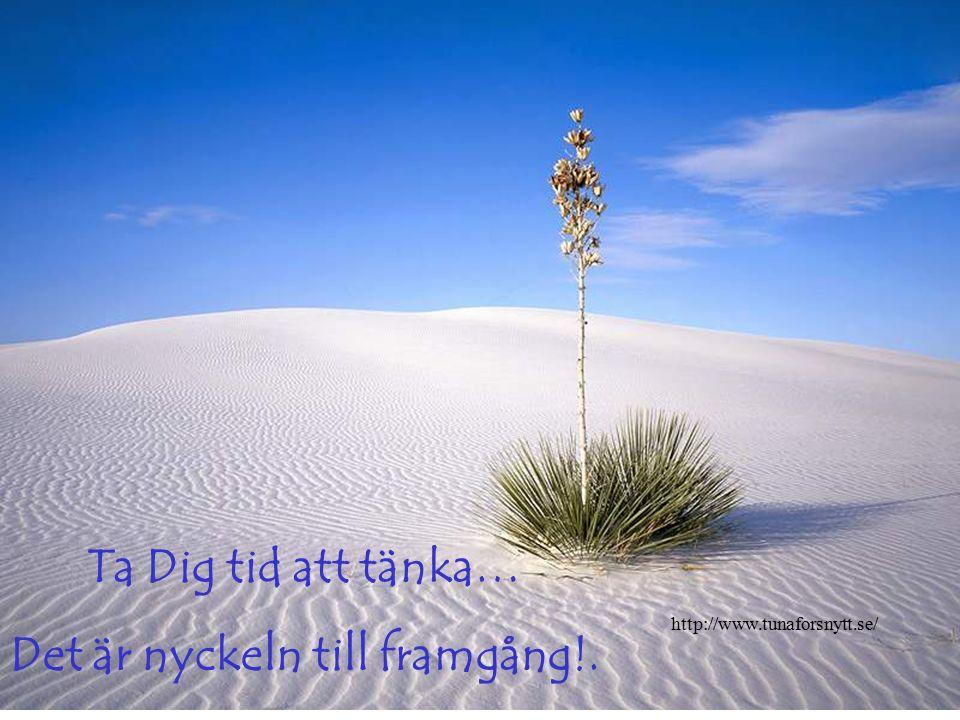Ta Dig tid att lyssna… ! Det är visdomens styrka! http://www.tunaforsnytt.se/