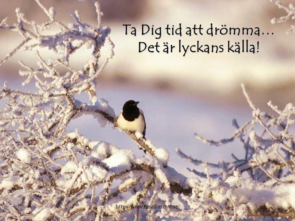 Ta Dig tid att drömma… Det är lyckans källa! http://www.tunaforsnytt.se/