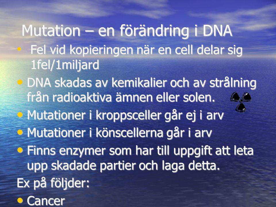 Mutation – en förändring i DNA Mutation – en förändring i DNA Fel vid kopieringen när en cell delar sig 1fel/1miljard Fel vid kopieringen när en cell