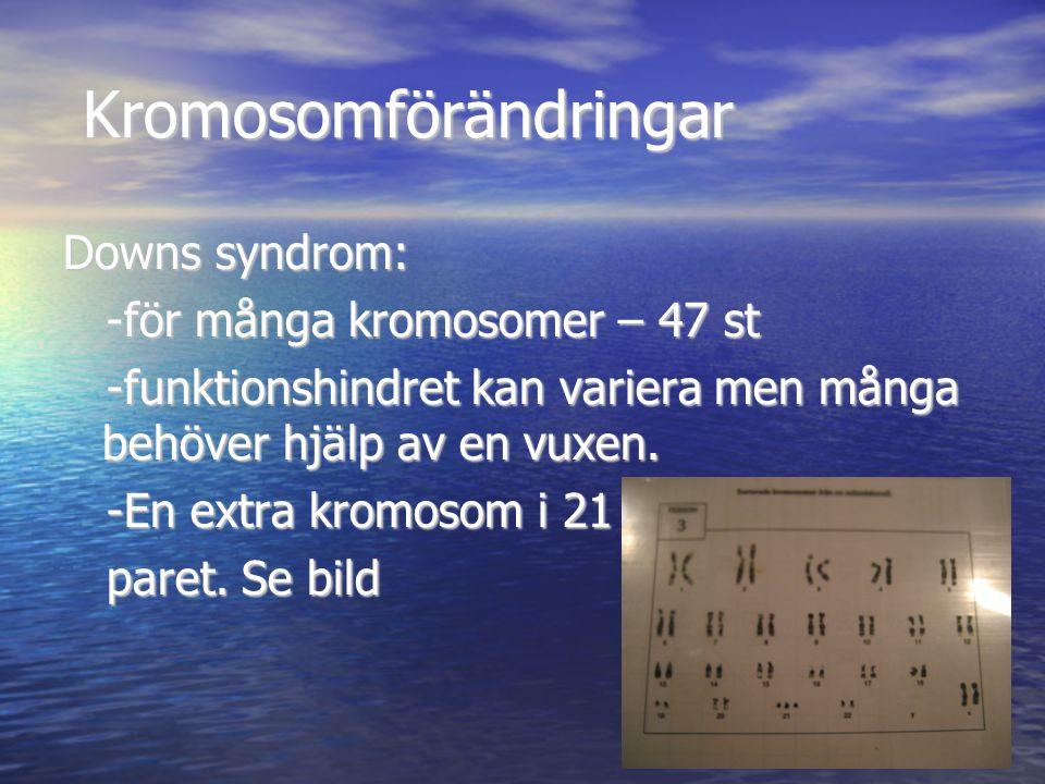 Kromosomförändringar Kromosomförändringar Downs syndrom: -för många kromosomer – 47 st -för många kromosomer – 47 st -funktionshindret kan variera men