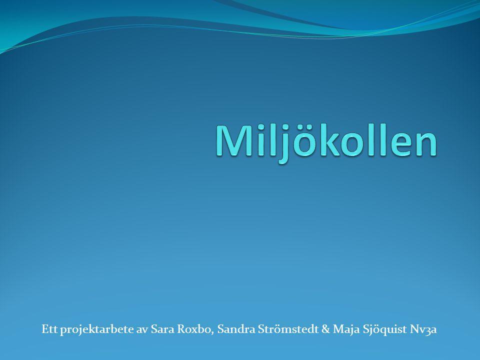 Ett projektarbete av Sara Roxbo, Sandra Strömstedt & Maja Sjöquist Nv3a
