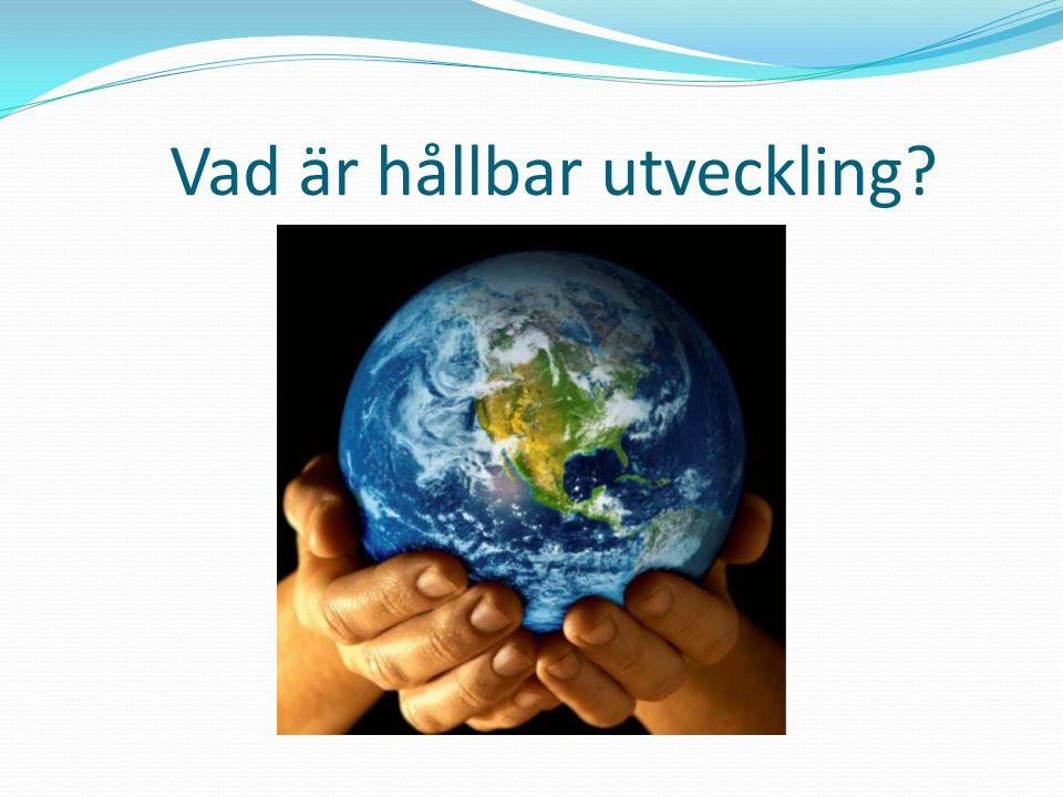 Vad är hållbar utveckling?