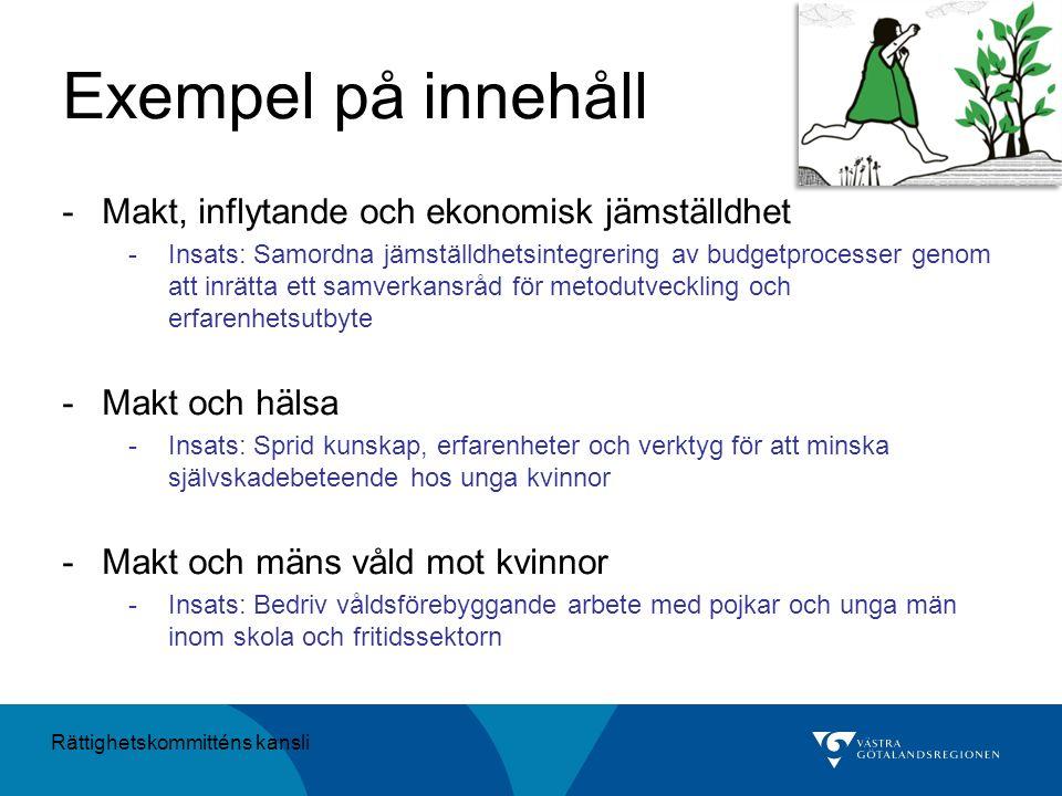 Exempel på innehåll -Makt, inflytande och ekonomisk jämställdhet -Insats: Samordna jämställdhetsintegrering av budgetprocesser genom att inrätta ett s