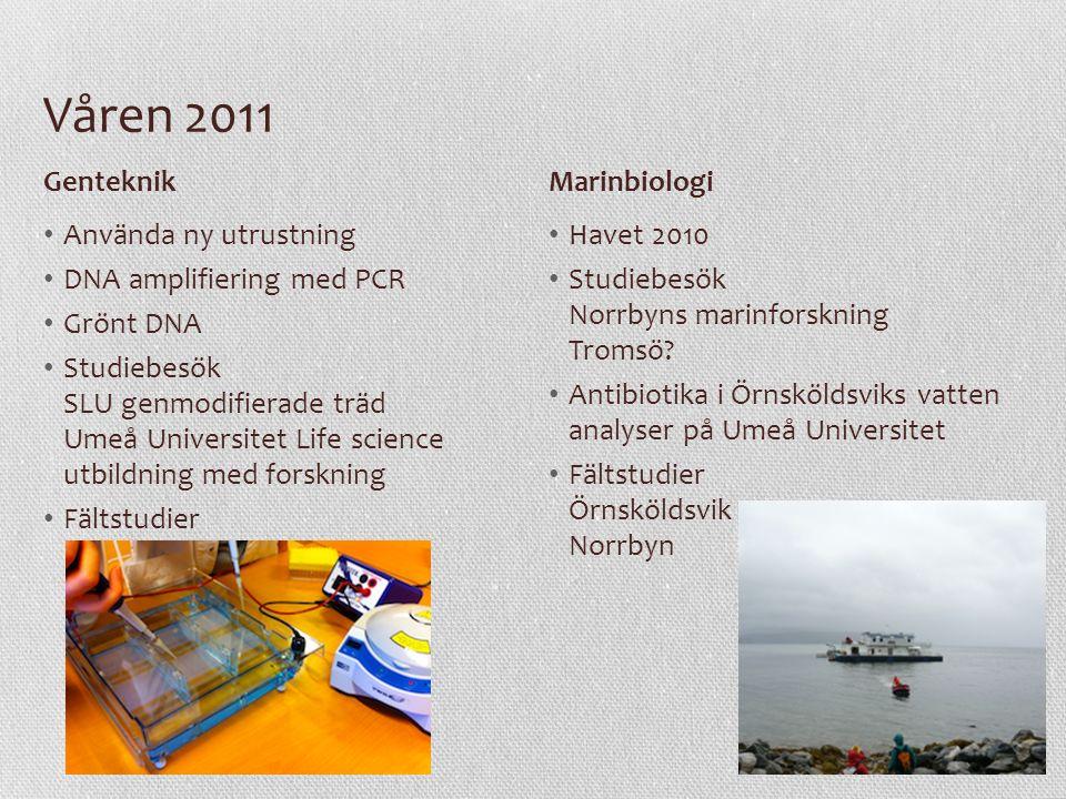 Våren 2011 Använda ny utrustning DNA amplifiering med PCR Grönt DNA Studiebesök SLU genmodifierade träd Umeå Universitet Life science utbildning med f
