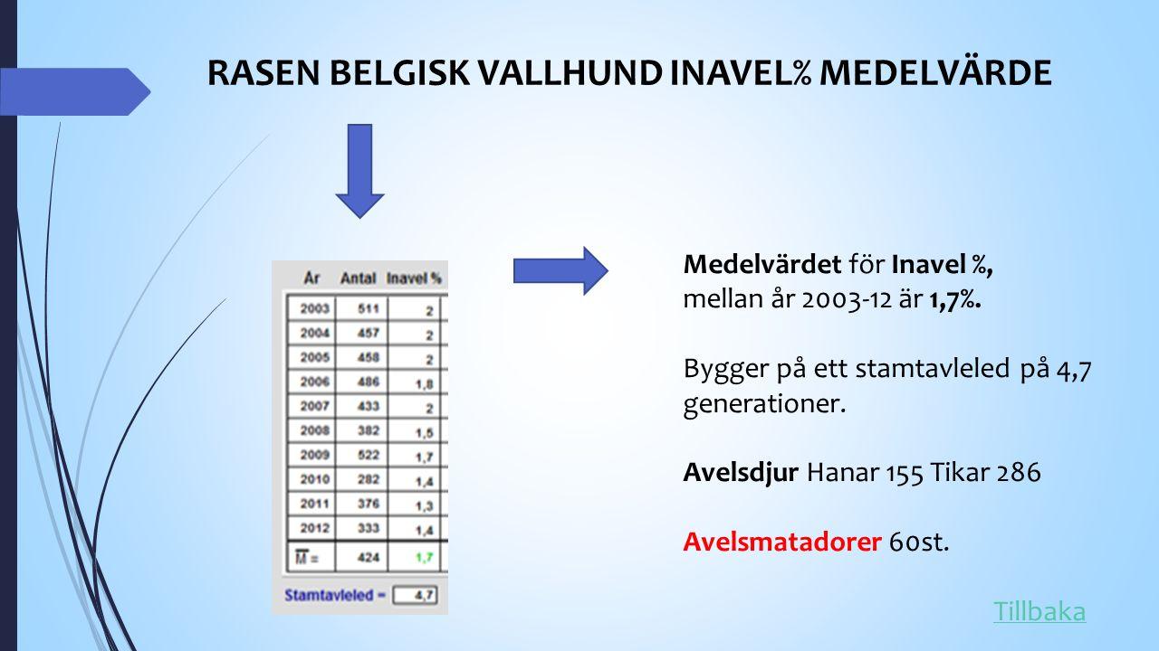 RASEN BELGISK VALLHUND INAVEL% MEDELVÄRDE Medelvärdet för Inavel %, mellan år 2003-12 är 1,7%.