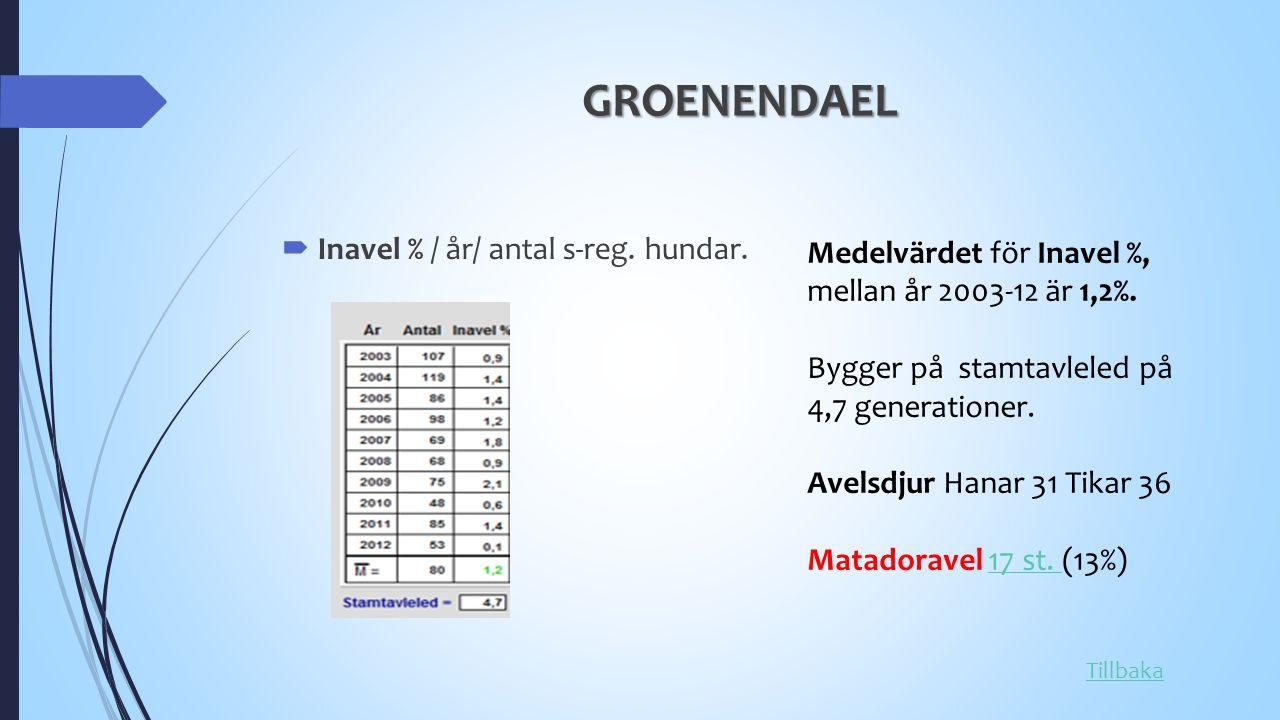 GROENENDAEL  Inavel % / år/ antal s-reg. hundar.