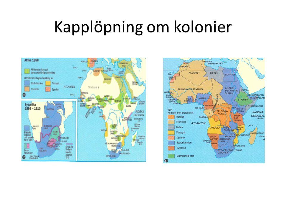 Kapplöpning om kolonier