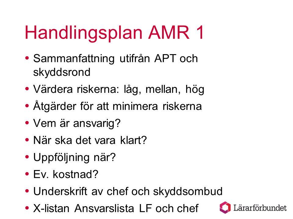 Handlingsplan AMR 1  Sammanfattning utifrån APT och skyddsrond  Värdera riskerna: låg, mellan, hög  Åtgärder för att minimera riskerna  Vem är ans