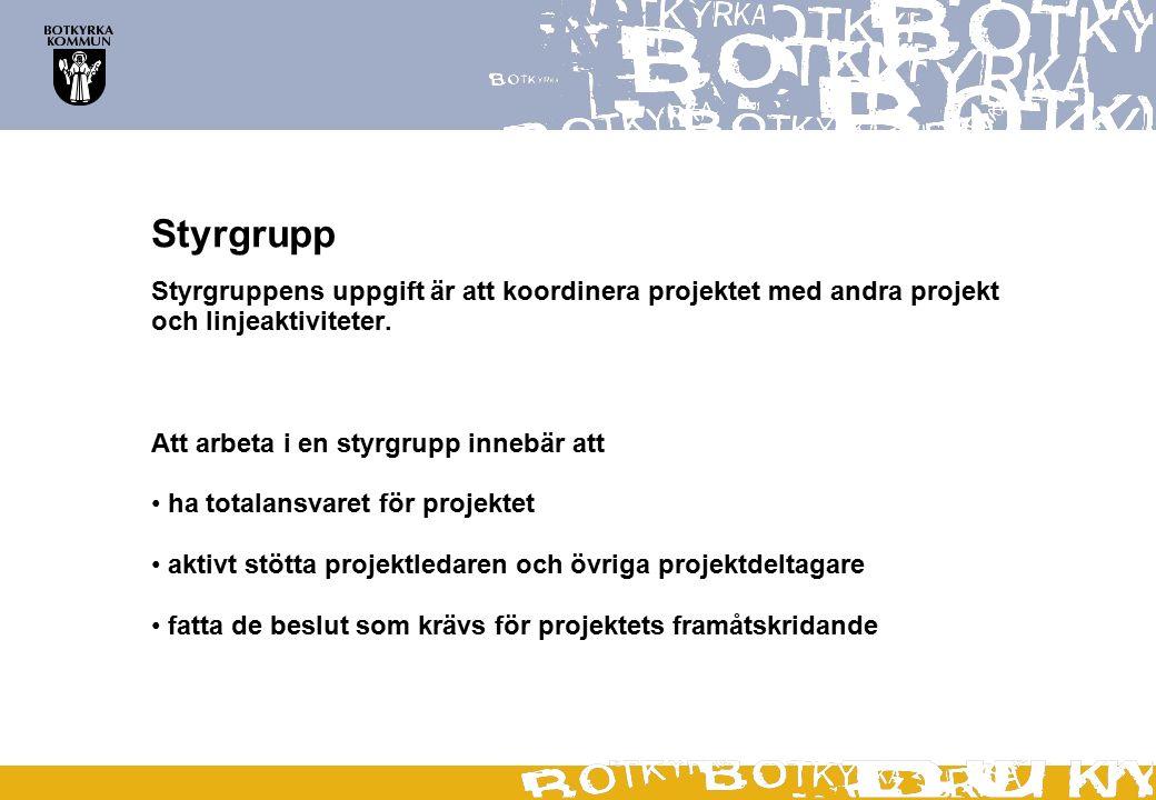 Styrgrupp Styrgruppens uppgift är att koordinera projektet med andra projekt och linjeaktiviteter. Att arbeta i en styrgrupp innebär att ha totalansva