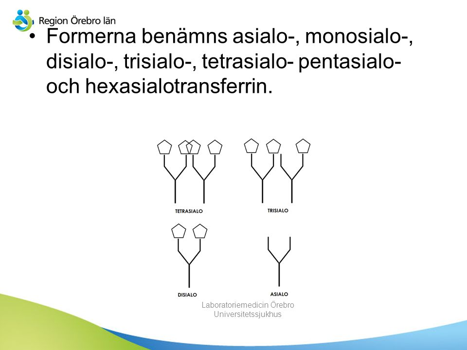 Formerna benämns asialo-, monosialo-, disialo-, trisialo-, tetrasialo- pentasialo- och hexasialotransferrin. Laboratoriemedicin Örebro Universitetssju