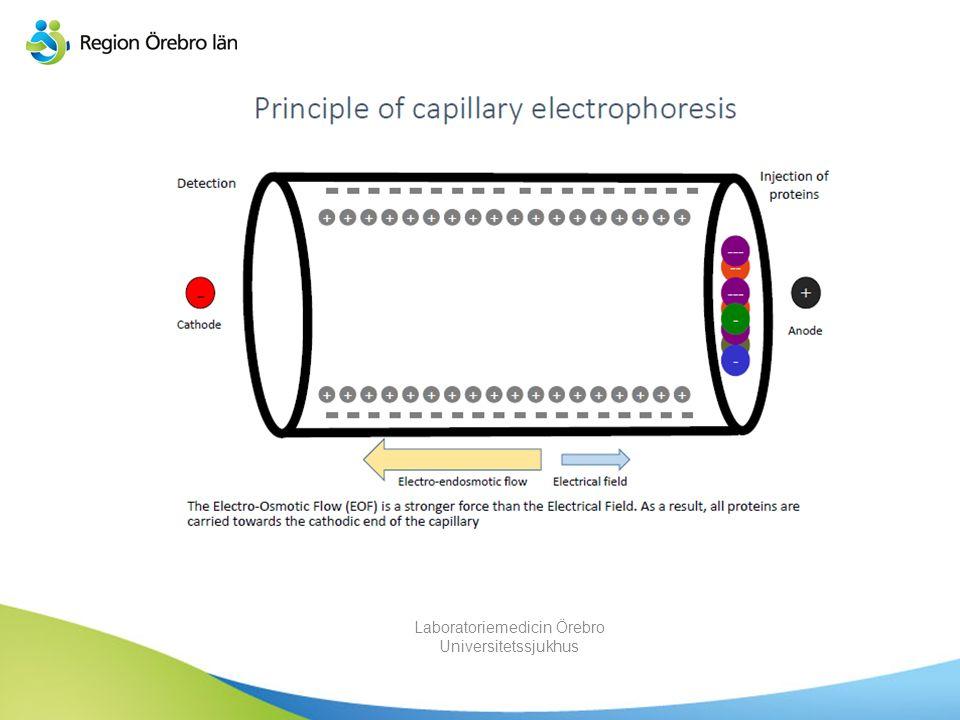 Vad är kapillärelektrofores? Elektrofores i en kapillär, där en analyt separeras baserat på sin elektroforetiska mobilitet och ett elektroosmotiskt fl