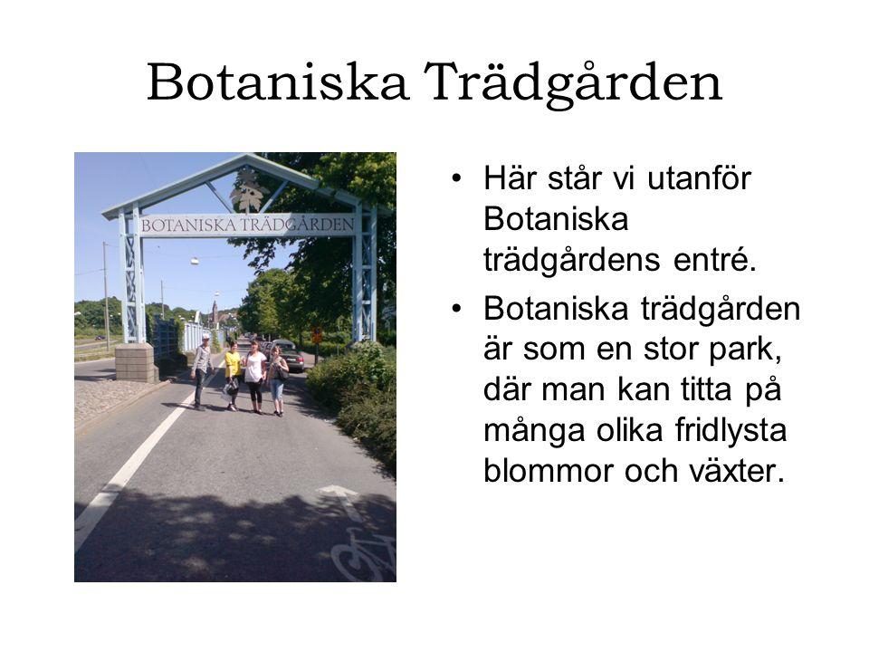Botaniska Trädgården Här står vi utanför Botaniska trädgårdens entré.