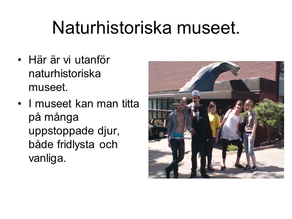 Naturhistoriska museet. Här är vi utanför naturhistoriska museet.