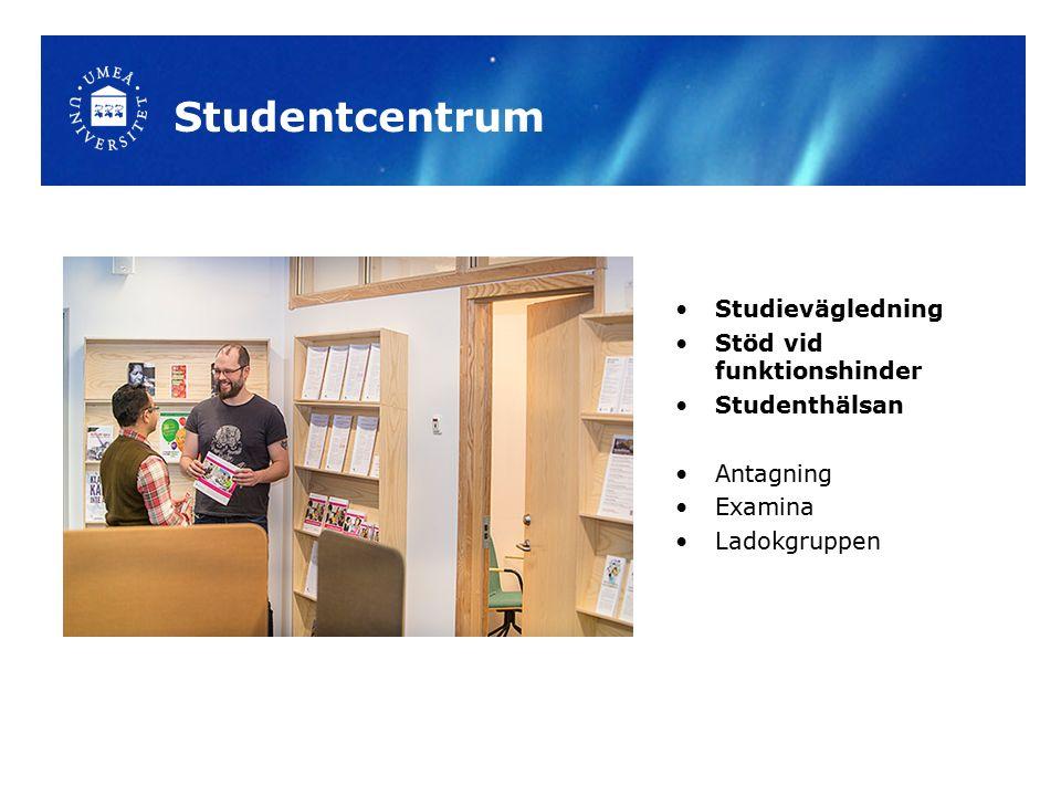 Studentcentrum Studievägledning Stöd vid funktionshinder Studenthälsan Antagning Examina Ladokgruppen