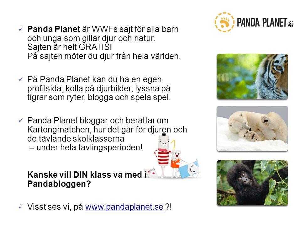 Panda Planet är WWFs sajt för alla barn och unga som gillar djur och natur.