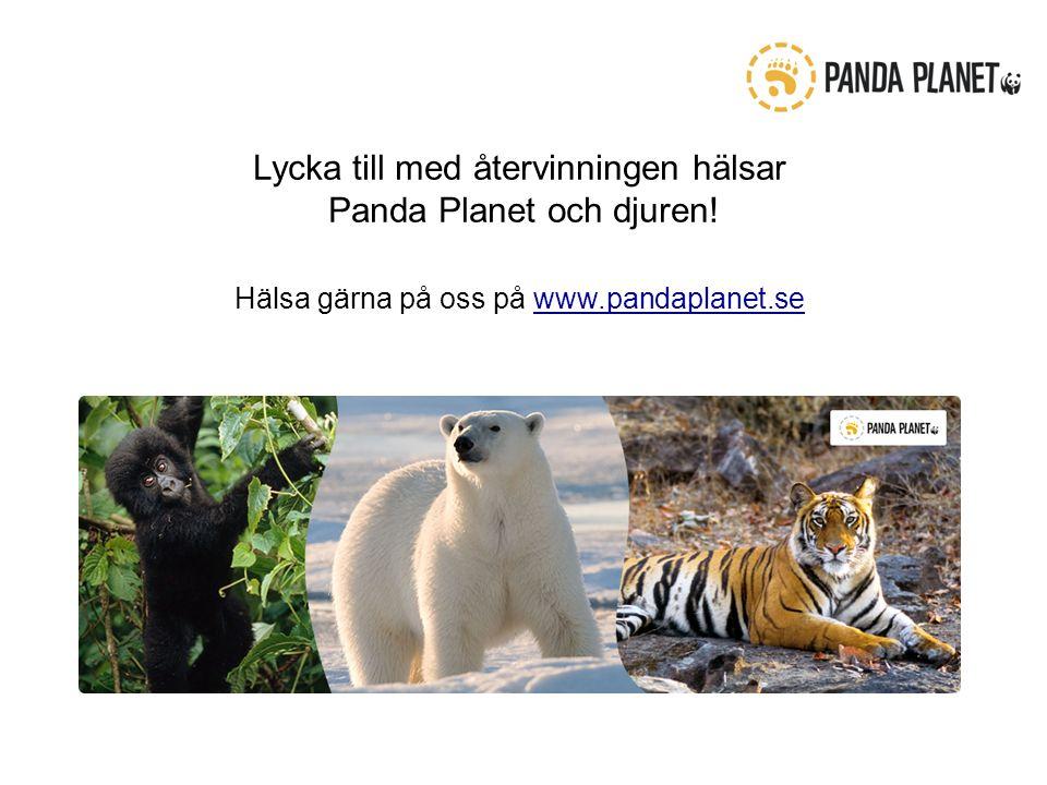 Lycka till med återvinningen hälsar Panda Planet och djuren.