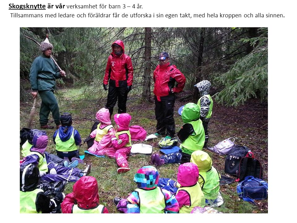 Skogsmulle för barn 5 – 6 år.
