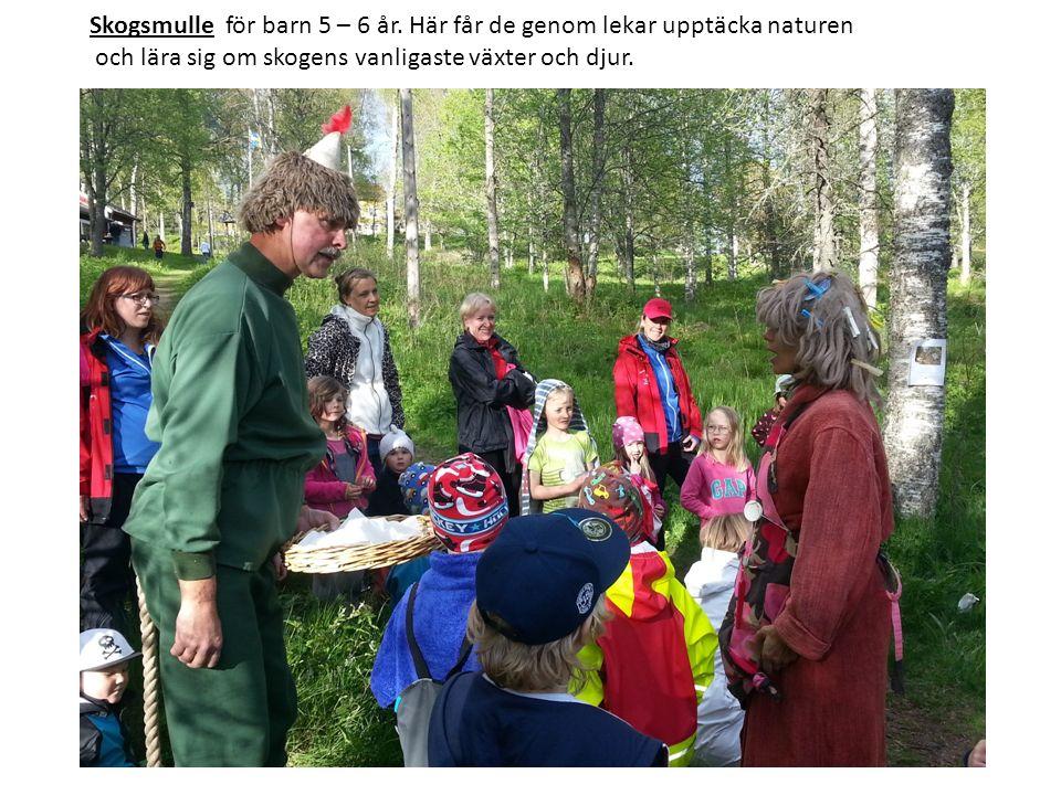 Medlemspriser Vuxen - 26 år och äldre 360 Kr Ungdom - 13-25 år 170 Kr Barn - 0-12 år 100 kr Familj 530 kr www.friluftsfrämjandet.se/nassjo
