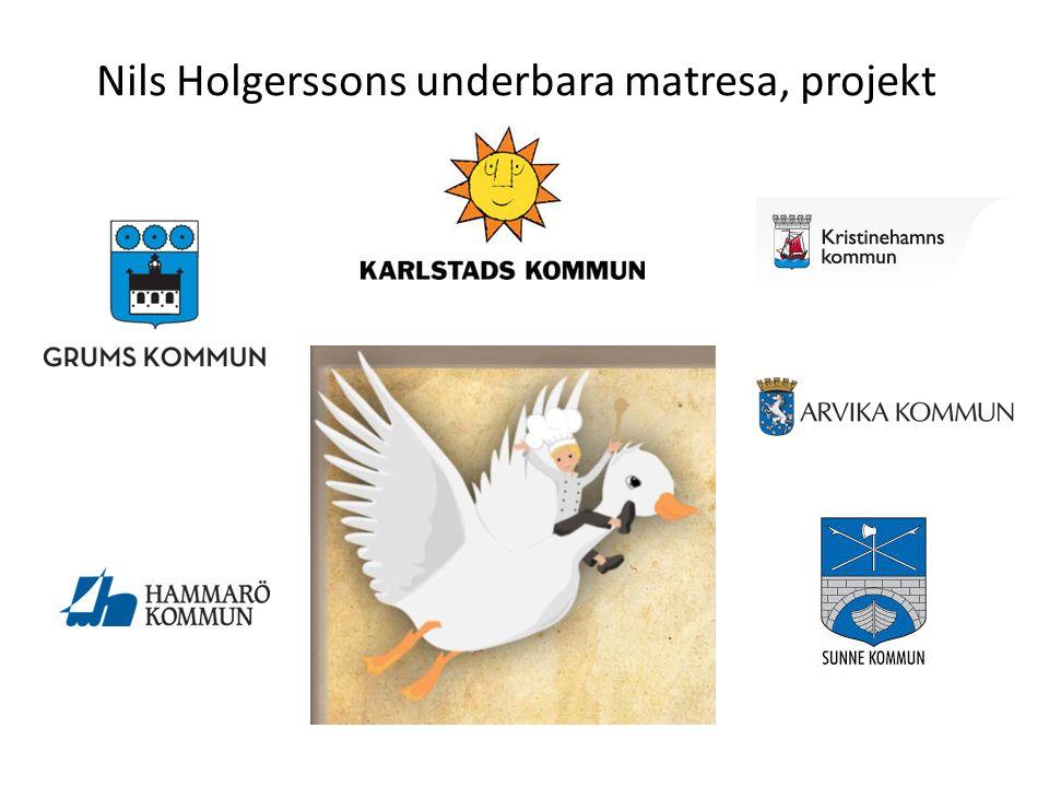 Nils Holgerssons underbara matresa, projekt