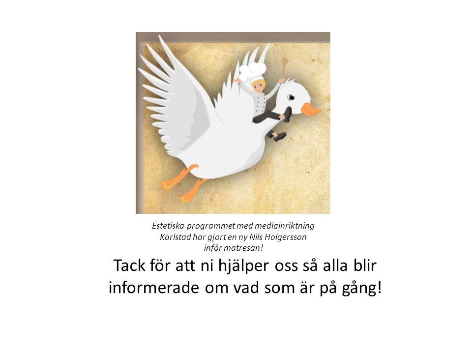 Estetiska programmet med mediainriktning Karlstad har gjort en ny Nils Holgersson inför matresan.